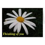 Pensamiento en usted tarjetas