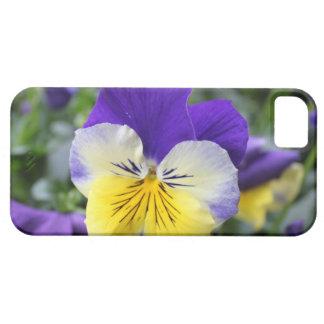 Pensamiento precioso del azul de la flor del iPhone 5 carcasa