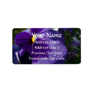 Pensamiento púrpura etiquetas de dirección