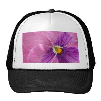 Pensamiento púrpura gorras de camionero