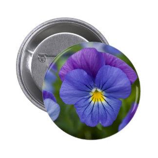 Pensamiento púrpura pin redondo 5 cm