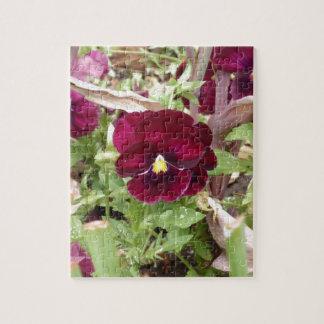 Pensamiento púrpura puzzles con fotos