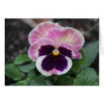 Pensamiento púrpura silenciado, notas florales en  tarjeta