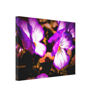 Pensamiento púrpura y blanco rústico lona envuelta para galerías
