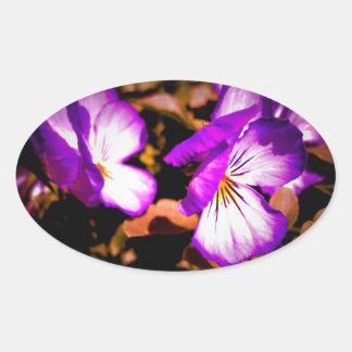 Pensamiento púrpura y blanco rústico pegatina de ovaladas