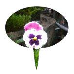 Pensamiento púrpura y blanco solitario figura de tarta