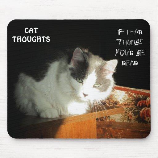 Pensamientos #1 del gato tapete de ratón