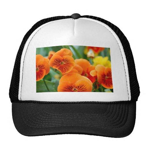 Pensamientos anaranjados gorras de camionero