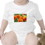 Pensamientos anaranjados trajes de bebé