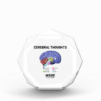 Pensamientos cerebrales dentro del humor anatómico