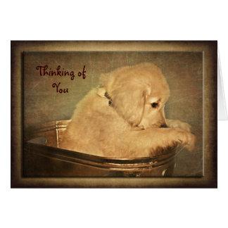 Pensamientos de oro tarjeta de felicitación