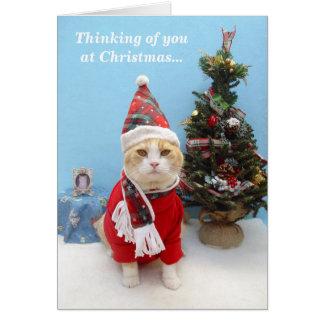 Pensamientos de usted en el navidad tarjeta de felicitación