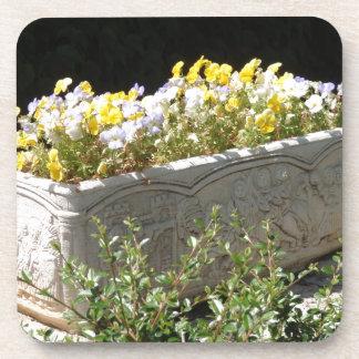 Pensamientos en un plantador del sarcófago posavaso