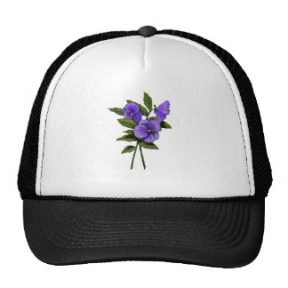 Pensamientos púrpuras dibujados mano en blanco gorra