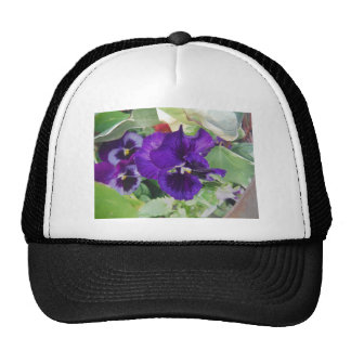Pensamientos púrpuras gorras de camionero