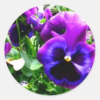 Pensamientos púrpuras pegatina redonda