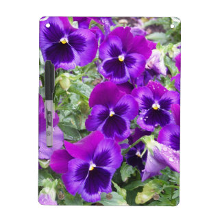 Pensamientos púrpuras tablero blanco