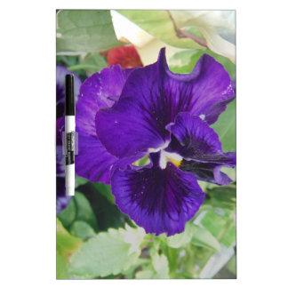 Pensamientos púrpuras pizarras blancas