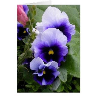 Pensamientos púrpuras tarjeta de felicitación