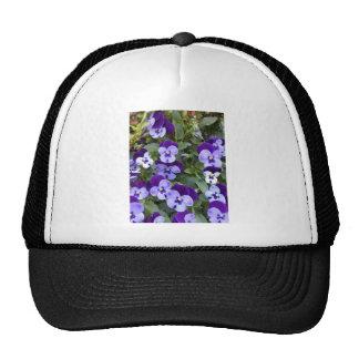 Pensamientos púrpuras y violetas gorros bordados