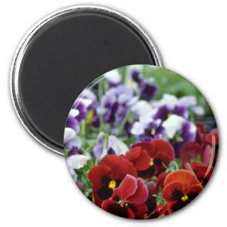 Pensamientos rojos con las flores negras de los ce imán de nevera