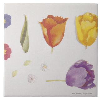Pensamientos y tulipanes azulejo