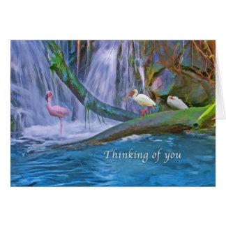Pensando en usted, cascada tropical, pájaros tarjeta de felicitación
