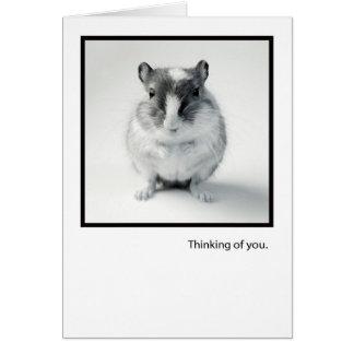 Pensando en usted, saludo lindo de la foto del rat felicitación