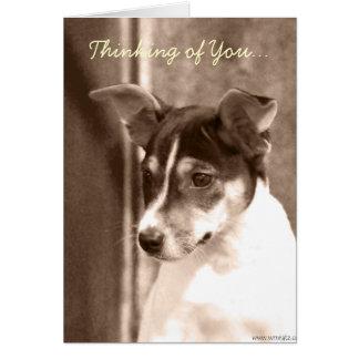 Pensando en usted, tarjeta de nota de Terrier de r