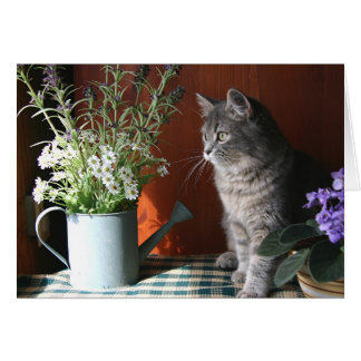 """Pensando en usted"", tarjeta del gato de Tabby"