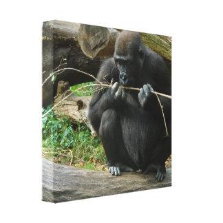 Pensive Gorilla Canvas Print