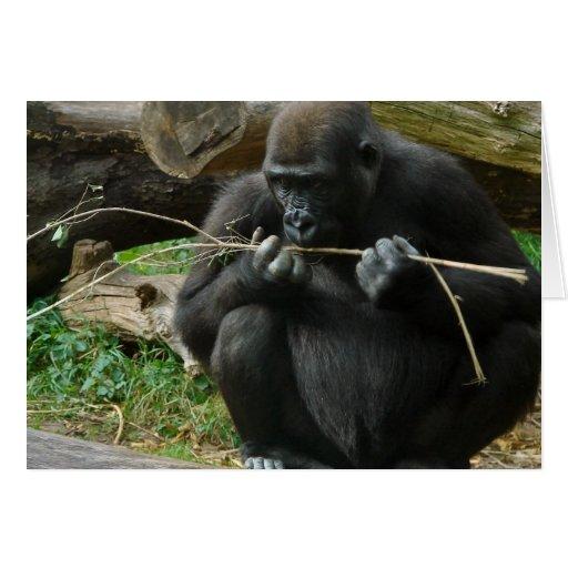 Pensive Gorilla Greeting Card