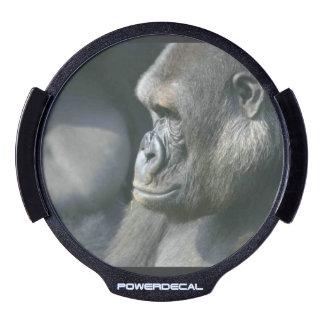 Pensive Gorilla LED Car Window Decal