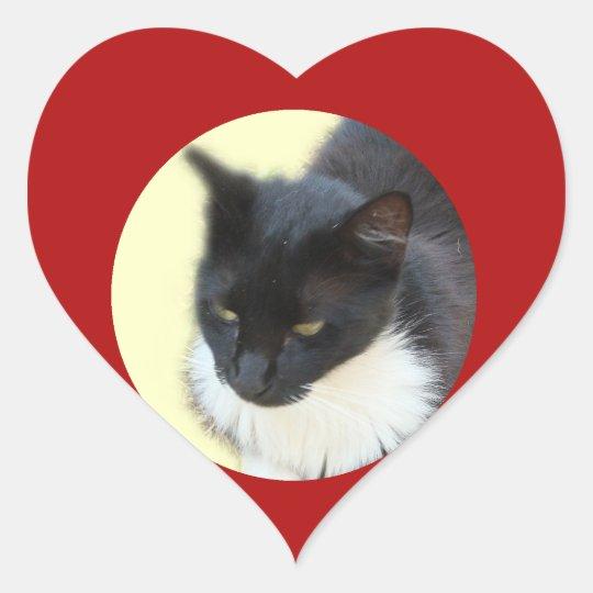 Pensive Kitty Heart Sticker