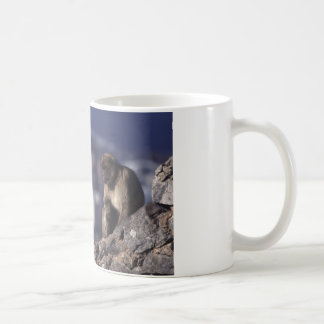 Pensive Monkey in Gibraltar Coffee Mug