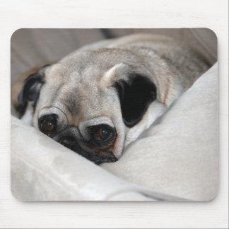 Pensive Pug Mouse Pad