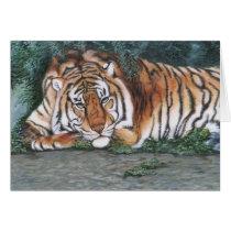 """Pensive Tiger"" Card"