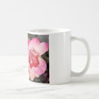 Penstemon Flower Strawberries and Cream Mug