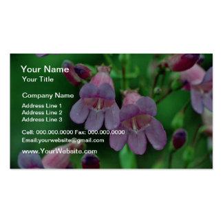 Penstemon flowers business card template