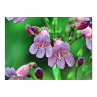 """Penstemon flowers 5"""" x 7"""" invitation card"""