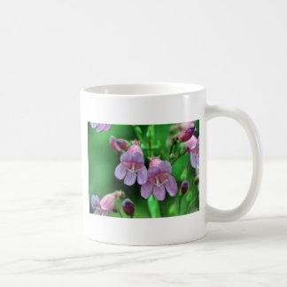 Penstemon flowers mugs