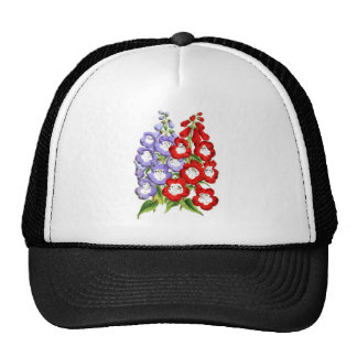 Penstemons - W.E. Gumbleton and Stanstead Rival Hat