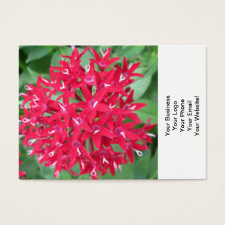Penta Red Flower Business Card