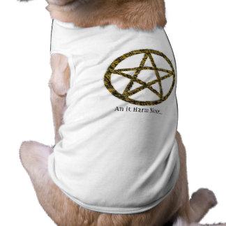 Pentacles T-Shirt