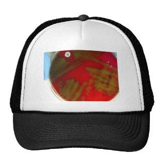 Penumonia Bacteria Trucker Hat