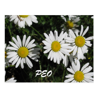 PEO Card