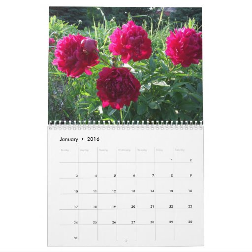 """Search Results for """"Flowers Calendar For November 2015 ..."""