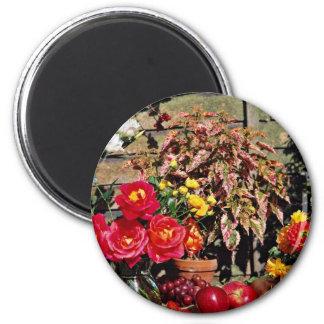 Peonies, dalias, flores del coleo imán redondo 5 cm