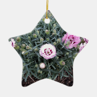 Peonies Double-Sided Star Ceramic Christmas Ornament