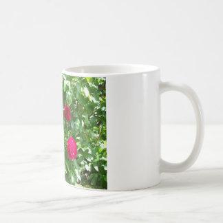 Peonies Coffee Mugs